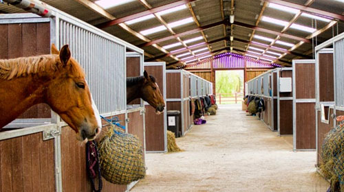 Graham Heath Equestrian Stable Blocks