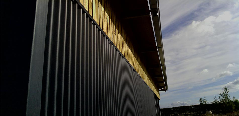 Arena Detailing