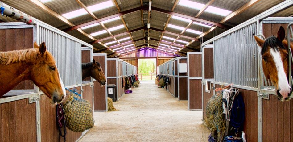 Equestrian Buildings Stable Manufacturer Graham Heath